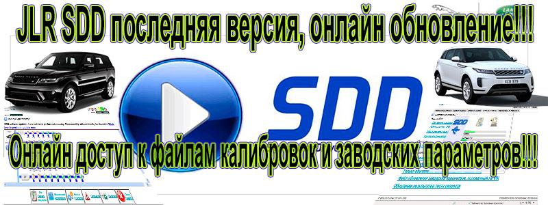 SDD-banner-800x300